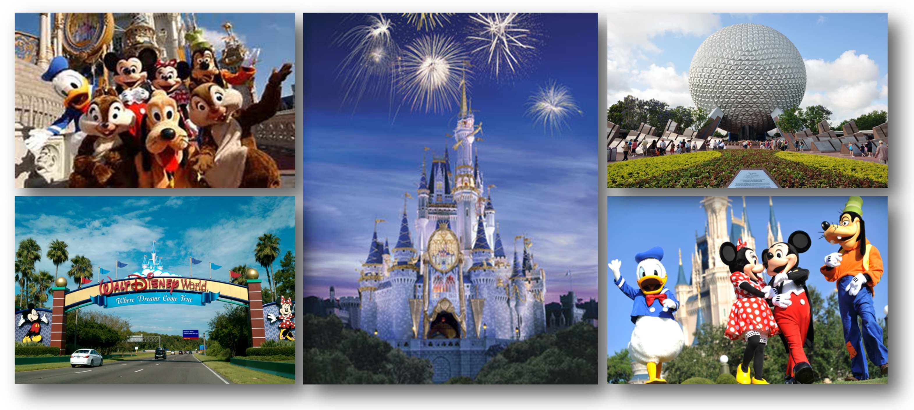Search For Homes For Sale Near Disney World Florida
